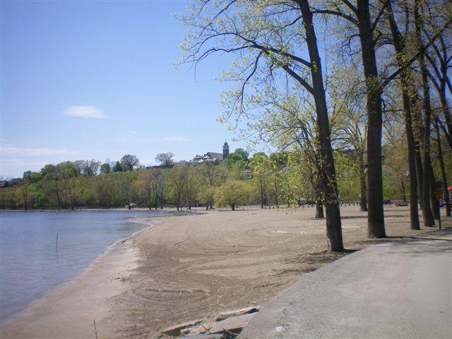 Restored beach